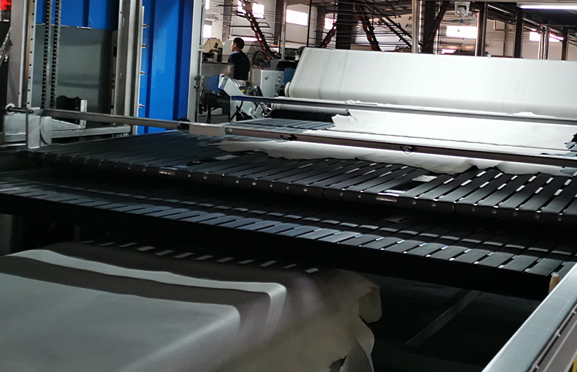 Automatic Transport Line-Designed For Leather Fleshing Machine - copy - copy